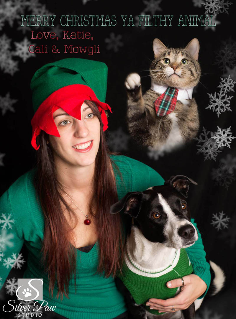 Meany Family Christmas Card Front Silver Paw Studio