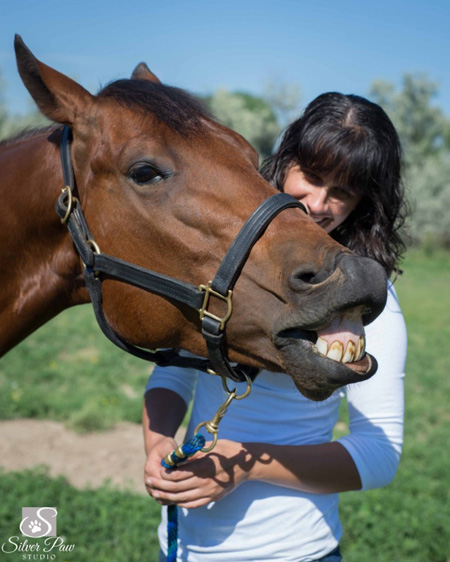 equine photographer in Ft. Collins, CO