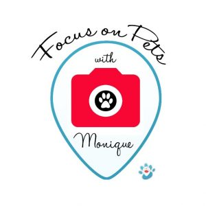 focus on pets periscope show graphic